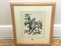 """Watercolour """"Chirping Song Thrush Bird"""" Signed Charles Frederick Tunnicliffe OBE RA 1901-1979 (27 of 35)"""