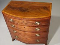 Handsome Regency Period Mahogany Bow Fronted Chest of Drawers (3 of 5)