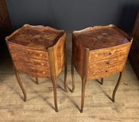 Pair of French Inlaid Tulipwood Bedside Tables (9 of 11)