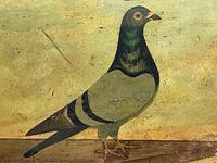 Decorative Sporting Early 20th Century Oil Canvas Painting English Racing Pigeon (6 of 35)