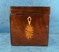 18th Century Harewood Inlaid Single Mahogany Tea Caddy (7 of 18)