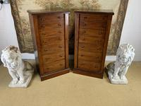 Pair of Mahogany Wellington Chests (2 of 7)