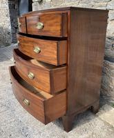 Large Regency Mahogany Bow Front Chest of Drawers (11 of 19)