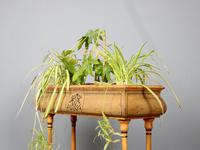 Early 20th Century Chinoiserie Planter by Mariner 1893 (7 of 7)
