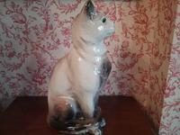 French Bavent Cat (4 of 4)