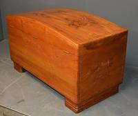 Camphor Wood Trunk (5 of 6)