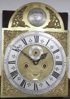 19th Century Swan Neck Pediment Longcase Clock Arched Silver & Brass Dial 8 Day Movement Signed Nathanid Washboun Gloucester (2 of 6)