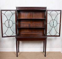 Edwardian Glazed Bookcase Cabinet on Stand Astragal Mahogany (11 of 11)