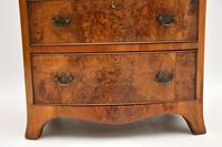Antique Burr Walnut Bow Front Chest of Drawers (6 of 9)