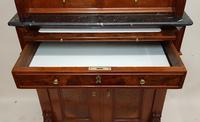 Victorian Walnut Dentist Cabinet (7 of 9)
