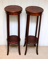 Pair of Edwardian Mahogany Jardinière Stands (8 of 10)