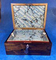 George III Rosewood Tunbridge Ware Box with Specimen Wood Inlay (11 of 15)