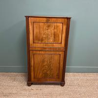 Regency Mahogany Antique Estate Cupboard with Fitted Interior (4 of 8)