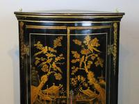 Handsome Regency Chinoiserie Corner Cabinet (2 of 8)