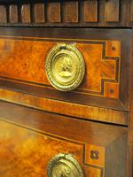 Dutch Marble Top Burr Elm Commode / Chest (8 of 13)