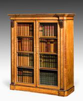 Early 19th Century Birch Bibliotheque