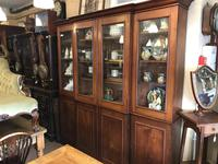 4 Door Mahogany Library Bookcase (5 of 10)
