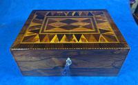 George III Rosewood Tunbridge Ware Box with Specimen Wood Inlay (9 of 15)