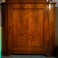 Mahogany Glazed Display Cabinet with Cupboard Below (4 of 7)