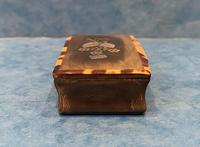 Victorian Horn & Tortoiseshell Snuff Box with Silver Inlay (6 of 16)