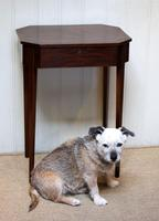 Regency Mahogany Work Table c.1820 (10 of 10)