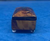 Tortoiseshell Miniature Casket (9 of 10)