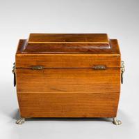 Regency Period Rosewood Tea Caddy (4 of 6)