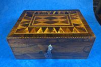 George III Rosewood Tunbridge Ware Box with Specimen Wood Inlay (12 of 15)