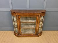 Victorian Burr Walnut Glazed Side Cabinet (2 of 15)