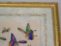Fine Antique Pair of Chinese Paintings Butterflies & Insects on Pith (10 of 10)