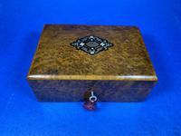 French 19th Century Burr Cedar Box. (9 of 14)