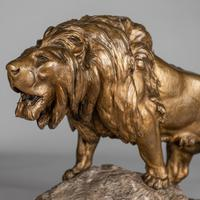 Stunning Large French Bronze Sculpture of Roaring Lion - Signed Le Courtier (7 of 10)