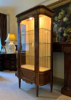 Exceptional 19th Century French Kingwood Parquetry Gilt Metal Vitrine Display Cabinet (3 of 17)