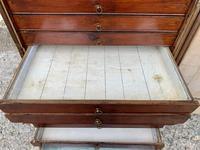 Georgian Collectors Tabletop Specimen Cabinet (19 of 26)