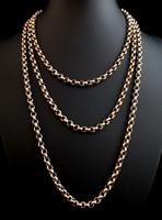 Antique gold longuard chain, necklace (3 of 14)