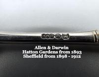 Pair of Silver Plated Victorian Wedding Spoons in Fitted Case (5 of 8)