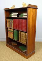 Neat 19th Century Mahogany Bookcase Cabinet (3 of 8)