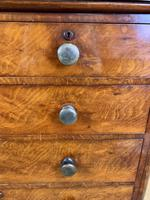 Exceptional Large Country House Chest of Drawers (3 of 8)