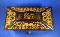 William IV Rosewood Tea Caddy (12 of 13)