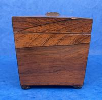 William IV Rosewood Twin Section Tea Caddy with Inlay (6 of 11)