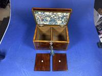 18th Century Mahogany Twin Tea Caddy with Shell Inlay (4 of 17)