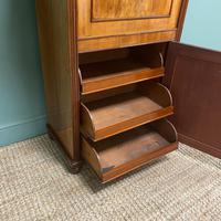 Regency Mahogany Antique Estate Cupboard with Fitted Interior (6 of 8)