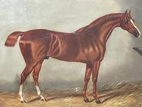 Victorian Oil Painting Chestnut Horse Portrait In Stable Signed Edwin Loder (8 of 42)