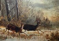 'Chasing The Deer' Beautiful 19th Century Game Hunting Moonlit Landscape Oil Painting (4 of 14)