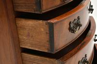 Antique Mahogany  Bow Front Chest of Drawers (10 of 11)