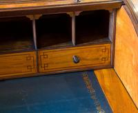 Satinwood Tambour Topped Desk c.1890 (8 of 10)