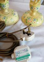 Pair of Kashmir Painted Lamps (5 of 6)