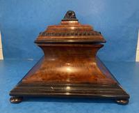 Victorian Burr Cedar & Ebony Shaped Tea Caddy (8 of 20)