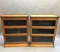 Globe Wernicke Type Bookcase (13 of 13)