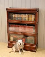 Mahogany Globe Wernicke Bookcase (5 of 11)